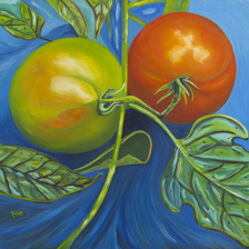 """United Tomatoes"" Oil on canvas. This is the first of my large canvas tomatoes 3'x3' title="