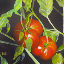"Donated to CT. Landmarks.org ""Regal Tomatoes""  12""x12"" Oil on canvas title="